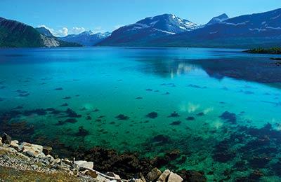 Feribot Norvegia